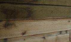 planche-de-cedre